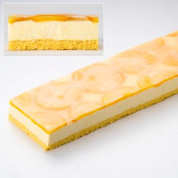 ヌーベルドゥース  ネーブルレアチーズケーキ 480g