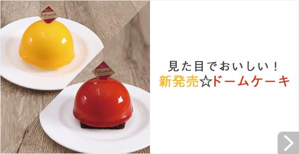 見た目でおいしい!新発売☆ドームケーキ